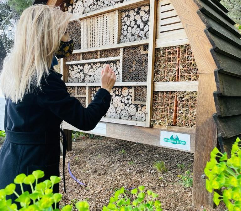 Pollinator hotel in Monaco – On the way to the #European #GreenDeal