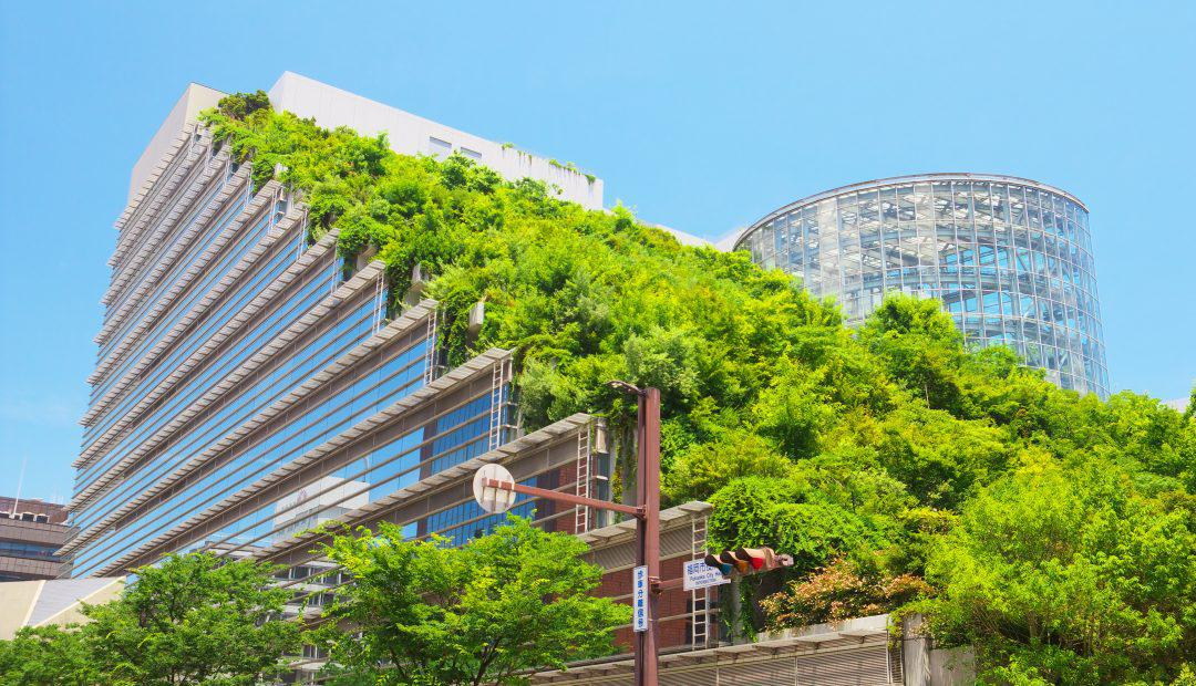 """Green"" buildings and architecture"