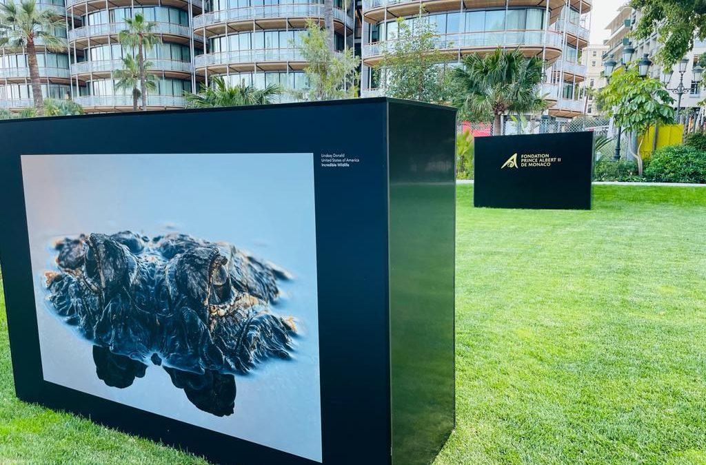 """Exposition : « Humanity and Wildlife: Crossed Destinies, Shared Territories"""""""