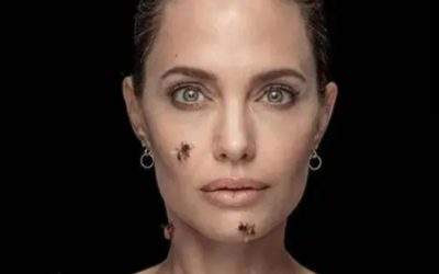 Angelina Jolie visited Saint Baume France to give diplomas to 8 beekeepers