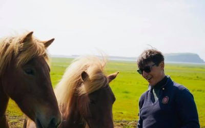 While travelling around Iceland you'll pass horses in almost every colour of the rainbow.